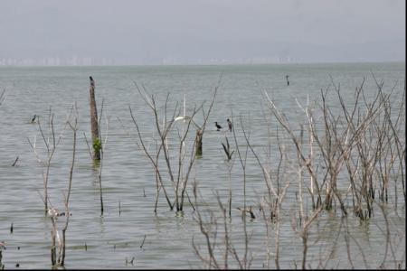 lago-de-valencia.jpg